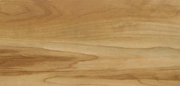 Vinylan fixx - Massiv Vinyl zum Klicken Apfelbaum da Vinci 03