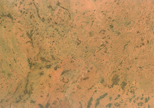 Ziro-Kork Korkboden natur KF (Bolero roh Kurzdiele)