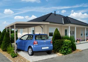 BasicLine Carport mit Geräteraum (319x245x208 silbergrau)