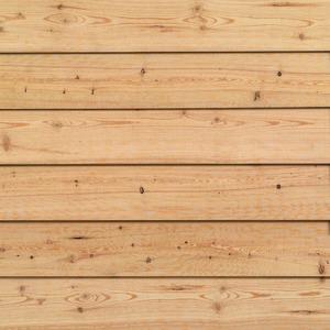 Fassadenprofil CONO - Sibirische Lärche